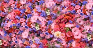 flowers-74598__180[1]